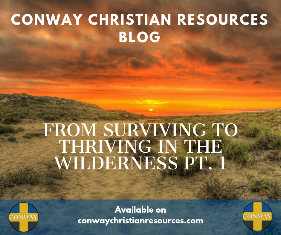 blog 35 from surviving to thriving pt1 FB
